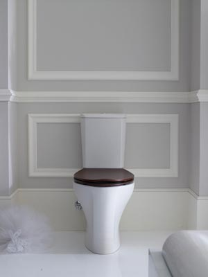 Six Toilet-Planning Mistakes