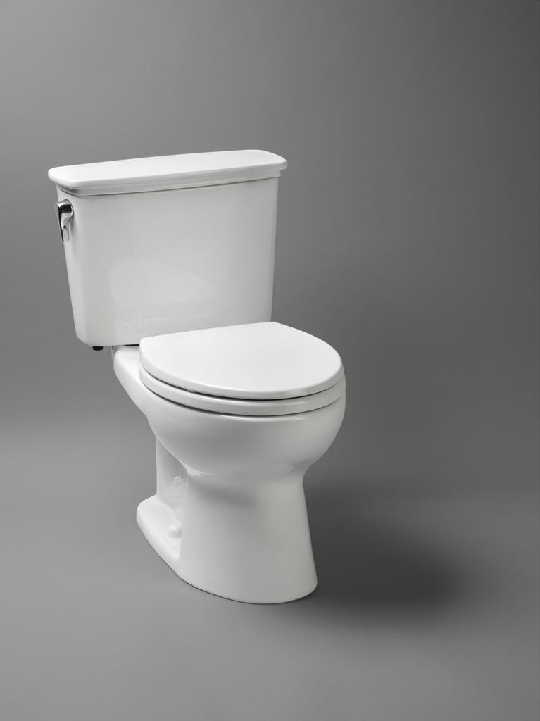 Eco Drake HET Toilet