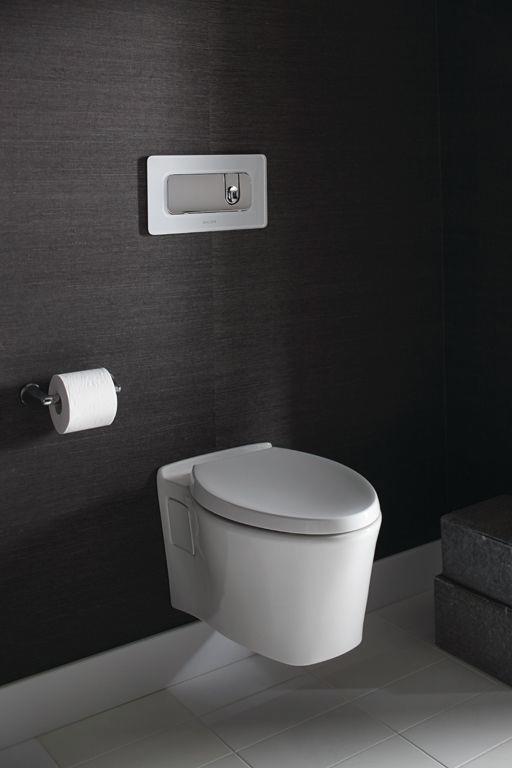 Pleo Dual-Flush Toilet