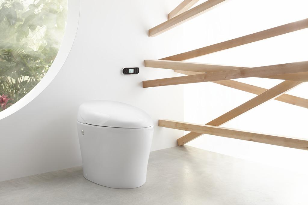Karing Integrated Toilet