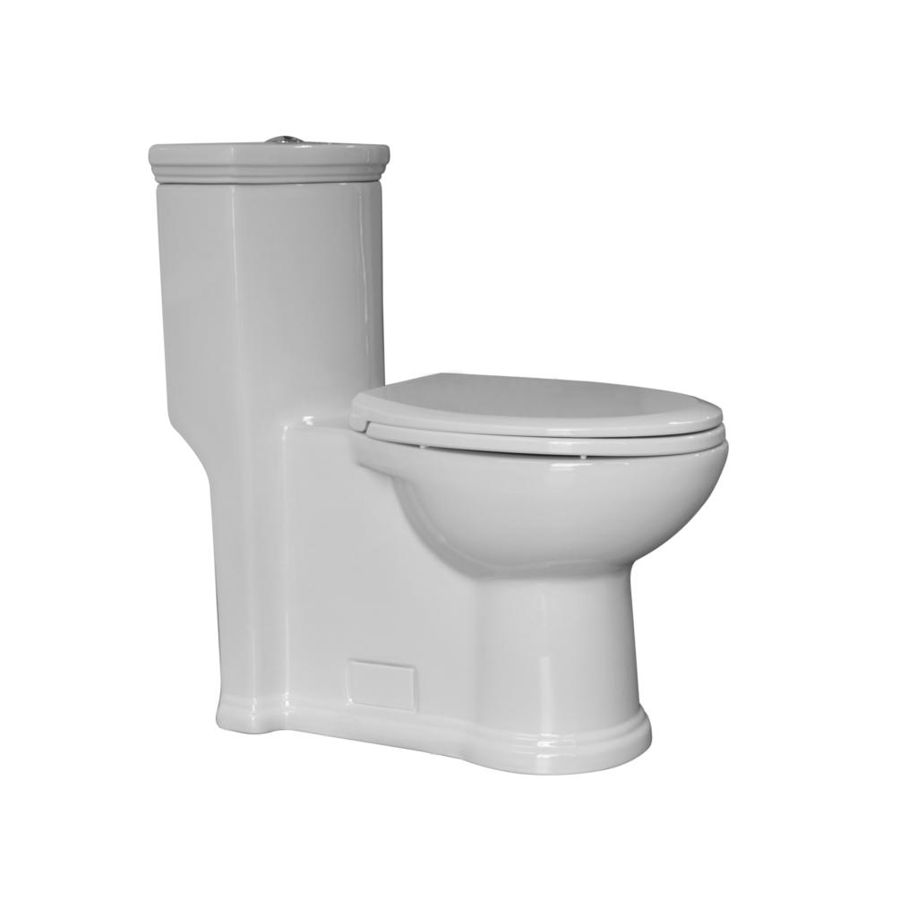 Magic Flush Toilet