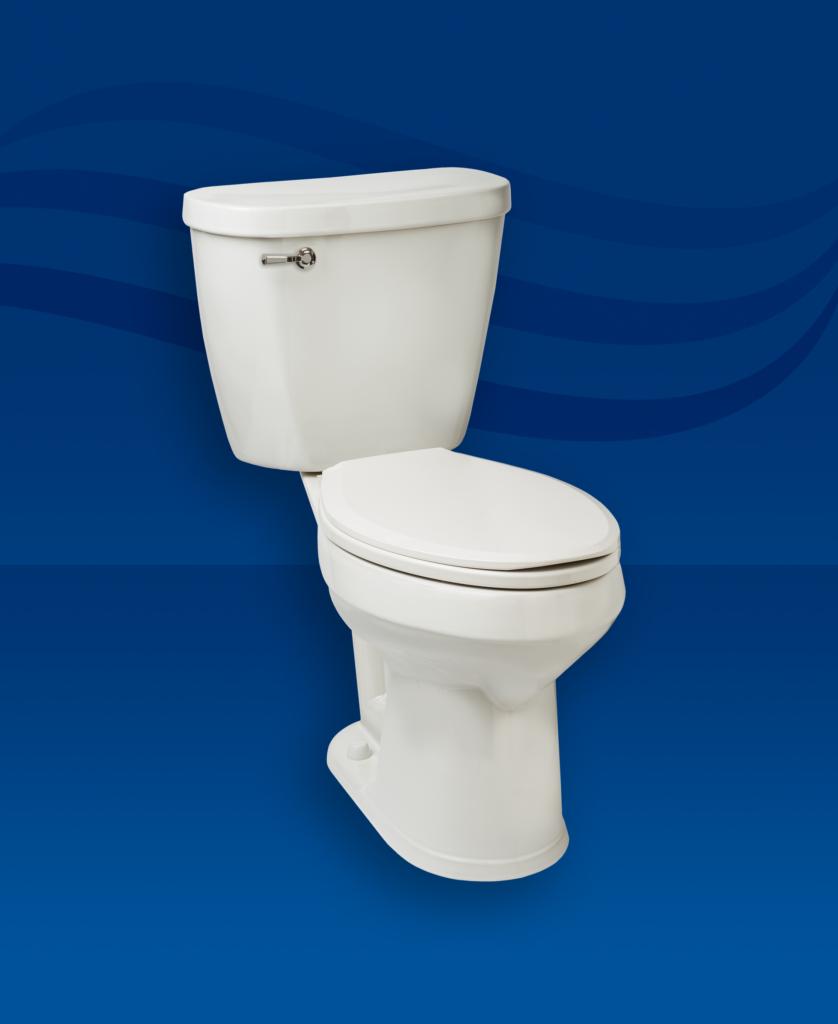 Protector No Overflow Toilet