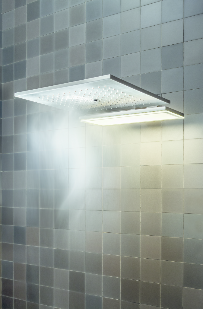 Ceiling Mounted Showerhead