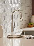 Selene Pull-Down Kitchen Faucet