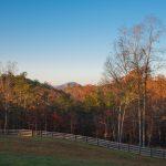 My View In Rappahannock