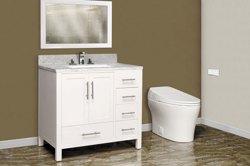 Toilet pairs practicality, pampering in one sleek package