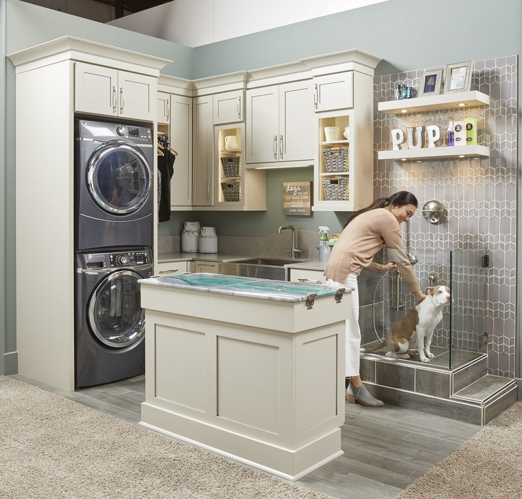 Laundry Room Color Palette: Dog Spa And Laundry Room