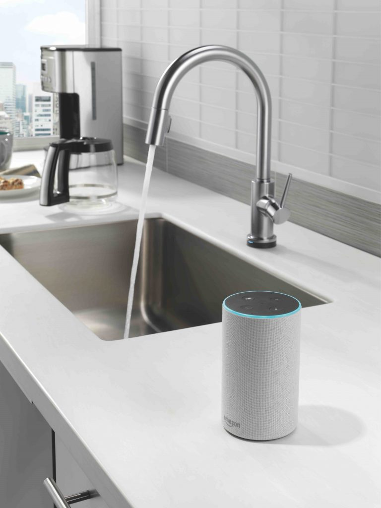 Voice-Controlled Faucet